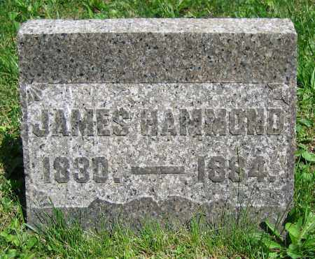 HAMMOND, JAMES - Clark County, Ohio | JAMES HAMMOND - Ohio Gravestone Photos