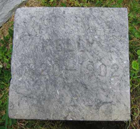 KELLY, CATHRINE - Clark County, Ohio | CATHRINE KELLY - Ohio Gravestone Photos