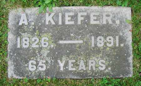 KIEFER, A. - Clark County, Ohio | A. KIEFER - Ohio Gravestone Photos