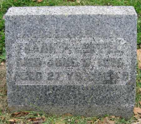 LEFFEL, FRANK P. - Clark County, Ohio | FRANK P. LEFFEL - Ohio Gravestone Photos