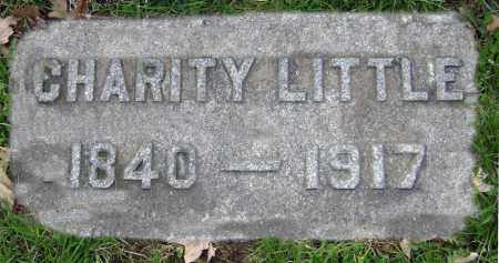LITTLE, CHARITY - Clark County, Ohio | CHARITY LITTLE - Ohio Gravestone Photos