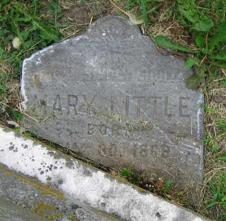 LITTLE, MARY - Clark County, Ohio | MARY LITTLE - Ohio Gravestone Photos