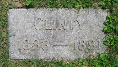 LOHNES, CLINTY - Clark County, Ohio | CLINTY LOHNES - Ohio Gravestone Photos