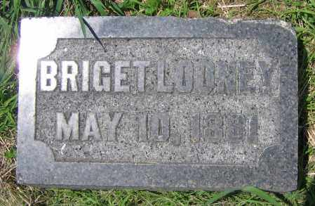 LOONEY, BRIGET - Clark County, Ohio | BRIGET LOONEY - Ohio Gravestone Photos