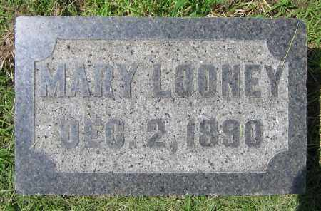 LOONEY, MARY - Clark County, Ohio | MARY LOONEY - Ohio Gravestone Photos