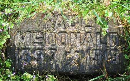 MCDONALD, PAUL - Clark County, Ohio | PAUL MCDONALD - Ohio Gravestone Photos