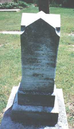 MCKINNEY, JOHN - Clark County, Ohio | JOHN MCKINNEY - Ohio Gravestone Photos