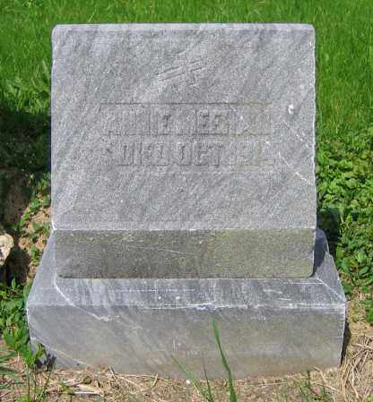 MEEHAN, ANNIE - Clark County, Ohio | ANNIE MEEHAN - Ohio Gravestone Photos