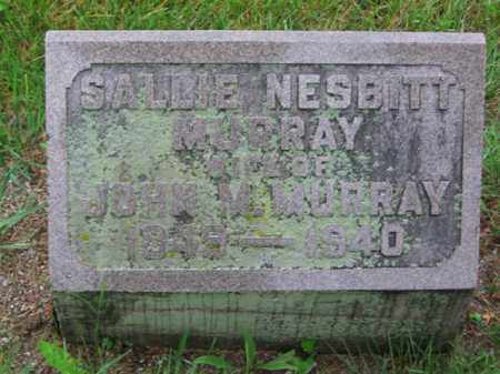 MURRAY, SALLIE - Clark County, Ohio | SALLIE MURRAY - Ohio Gravestone Photos