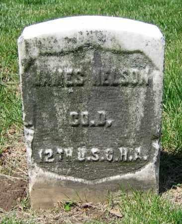 NELSON, JAMES - Clark County, Ohio | JAMES NELSON - Ohio Gravestone Photos