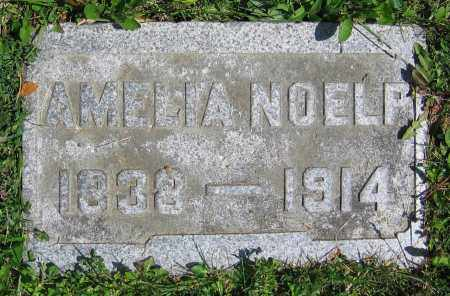 NOELP, AMELIA - Clark County, Ohio | AMELIA NOELP - Ohio Gravestone Photos