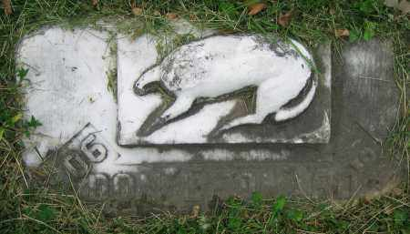 PADEN, DON LEONARD - Clark County, Ohio   DON LEONARD PADEN - Ohio Gravestone Photos