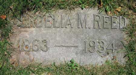 REED, CORDELIA M. - Clark County, Ohio | CORDELIA M. REED - Ohio Gravestone Photos