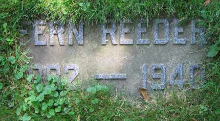 REEDER, FERN - Clark County, Ohio | FERN REEDER - Ohio Gravestone Photos