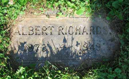 RICHARDS, ALBERT - Clark County, Ohio | ALBERT RICHARDS - Ohio Gravestone Photos