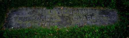 SCHEERSCHMIDT, CHARLOTTE - Clark County, Ohio | CHARLOTTE SCHEERSCHMIDT - Ohio Gravestone Photos