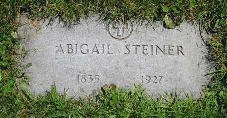 STEINER, ABIGAIL - Clark County, Ohio | ABIGAIL STEINER - Ohio Gravestone Photos