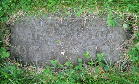 TOMS, CHARLES C. - Clark County, Ohio | CHARLES C. TOMS - Ohio Gravestone Photos