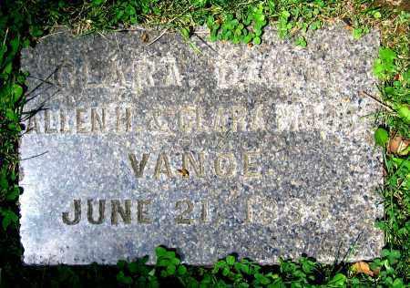 VANCE, CLARA - Clark County, Ohio | CLARA VANCE - Ohio Gravestone Photos