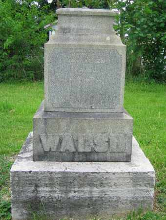 WALSH, JAS. - Clark County, Ohio | JAS. WALSH - Ohio Gravestone Photos