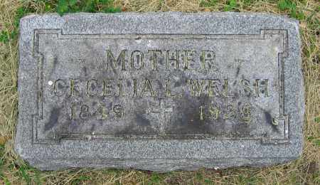 WELSH, CECELIA L. - Clark County, Ohio | CECELIA L. WELSH - Ohio Gravestone Photos