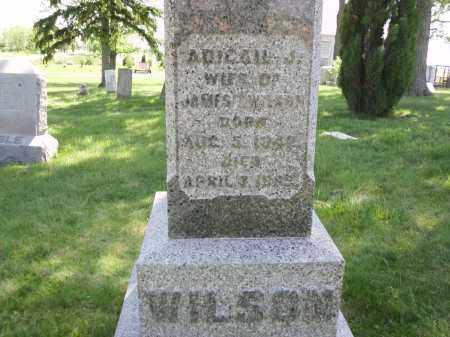 WILSON, ABIGAIL J. - Clark County, Ohio | ABIGAIL J. WILSON - Ohio Gravestone Photos