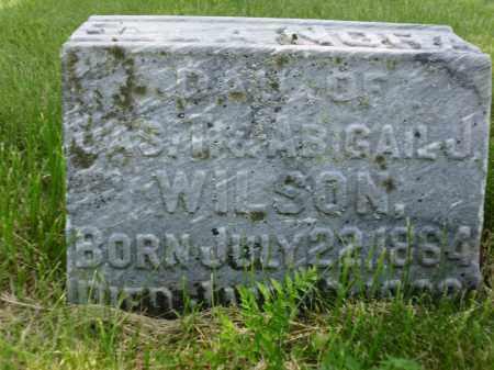 WILSON, ELLA NORA - Clark County, Ohio | ELLA NORA WILSON - Ohio Gravestone Photos