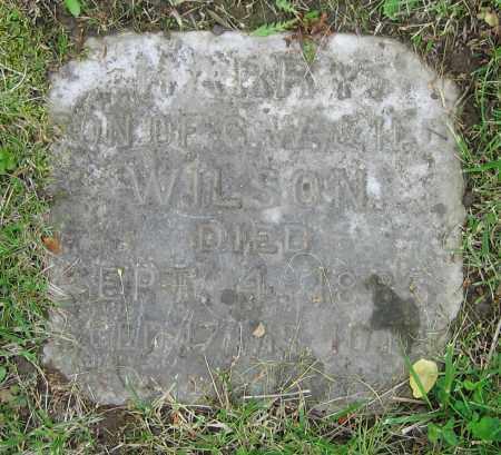 WILSON, HARRY - Clark County, Ohio | HARRY WILSON - Ohio Gravestone Photos