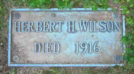 WILSON, HERBERT H. - Clark County, Ohio | HERBERT H. WILSON - Ohio Gravestone Photos