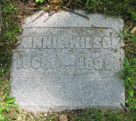 WILSON, MINNIE - Clark County, Ohio | MINNIE WILSON - Ohio Gravestone Photos