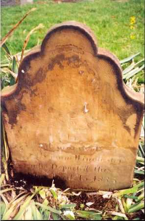 WINCHESTER, LYMAN - Clark County, Ohio | LYMAN WINCHESTER - Ohio Gravestone Photos