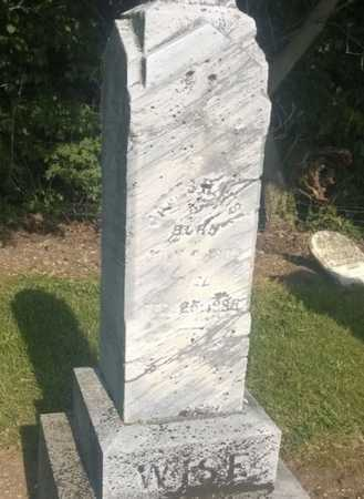 WISE, JAMES HATFIELD - Clark County, Ohio   JAMES HATFIELD WISE - Ohio Gravestone Photos