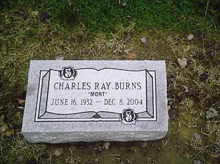 BURNS, CHARLES RAY - Clermont County, Ohio | CHARLES RAY BURNS - Ohio Gravestone Photos