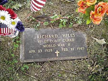 HILES, RICHARD - Clermont County, Ohio | RICHARD HILES - Ohio Gravestone Photos