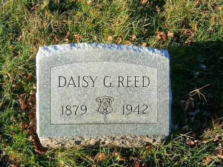 REED, DAISY  G - Clermont County, Ohio | DAISY  G REED - Ohio Gravestone Photos