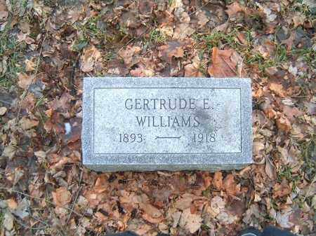 WILLIAMS, GERTRUDE  E - Clermont County, Ohio | GERTRUDE  E WILLIAMS - Ohio Gravestone Photos