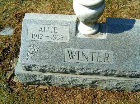 WINTER, ALLIE - Clermont County, Ohio | ALLIE WINTER - Ohio Gravestone Photos