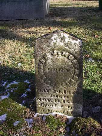 HUFFMAN, HANNAH H. - Clinton County, Ohio | HANNAH H. HUFFMAN - Ohio Gravestone Photos