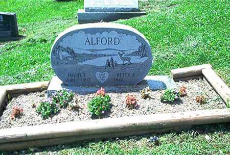 ALFORD, DAVID E. - Columbiana County, Ohio | DAVID E. ALFORD - Ohio Gravestone Photos