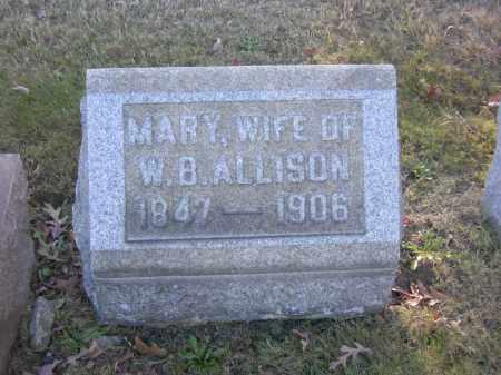 ALLISON, MARY - Columbiana County, Ohio | MARY ALLISON - Ohio Gravestone Photos