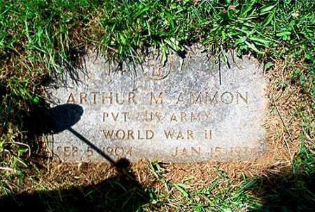 AMMON, ARTHUR M. - Columbiana County, Ohio   ARTHUR M. AMMON - Ohio Gravestone Photos
