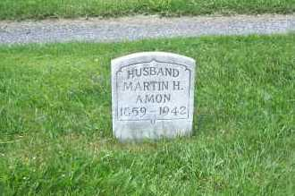 AMON, MARTIN - Columbiana County, Ohio | MARTIN AMON - Ohio Gravestone Photos