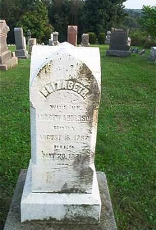 ANDERSON, ELIZABETH - Columbiana County, Ohio | ELIZABETH ANDERSON - Ohio Gravestone Photos