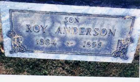 ANDERSON, ROY - Columbiana County, Ohio | ROY ANDERSON - Ohio Gravestone Photos