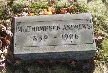 ANDREWS, MRS. THOMPSON - Columbiana County, Ohio | MRS. THOMPSON ANDREWS - Ohio Gravestone Photos