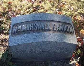 BANNON, WM MARSHALL - Columbiana County, Ohio | WM MARSHALL BANNON - Ohio Gravestone Photos