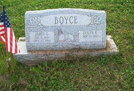 HEDDLESON BOYCE, EVELYN R. - Columbiana County, Ohio | EVELYN R. HEDDLESON BOYCE - Ohio Gravestone Photos