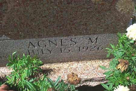BRANDT, AGNES M. - Columbiana County, Ohio | AGNES M. BRANDT - Ohio Gravestone Photos