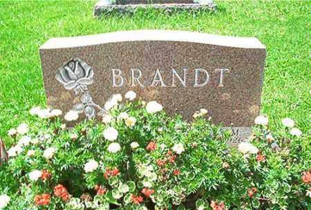 BRANDT, ANGES M. - Columbiana County, Ohio | ANGES M. BRANDT - Ohio Gravestone Photos