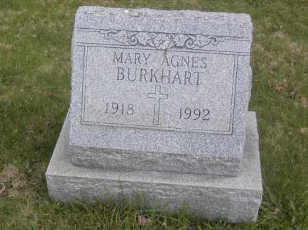 BURKHART, MARY AGNES - Columbiana County, Ohio | MARY AGNES BURKHART - Ohio Gravestone Photos